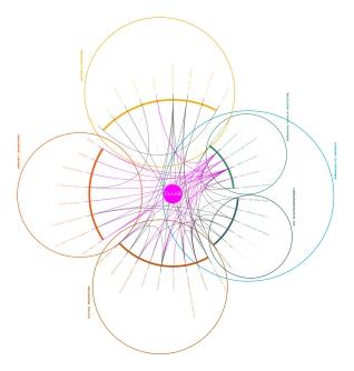 networks - basic