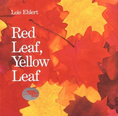 RED_LEAF_YELLOW_LEAF